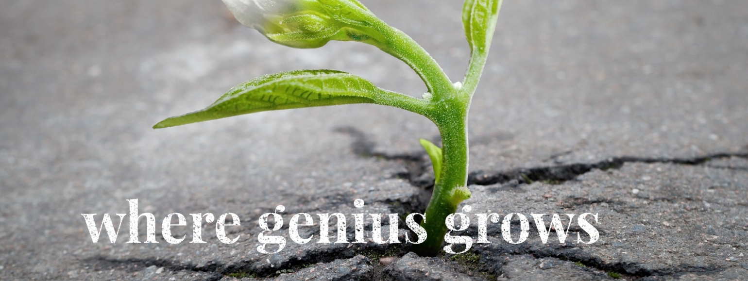 Where Genius Grows